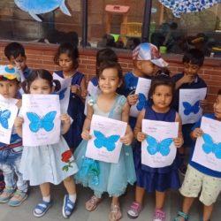My Blue butterfly-nur